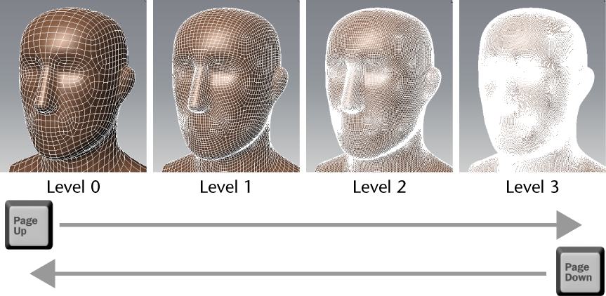 Mudbox Help: Display a different subdivision level